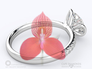 Adding Profile Detail on Your Engagement Ring - Disa Orchid