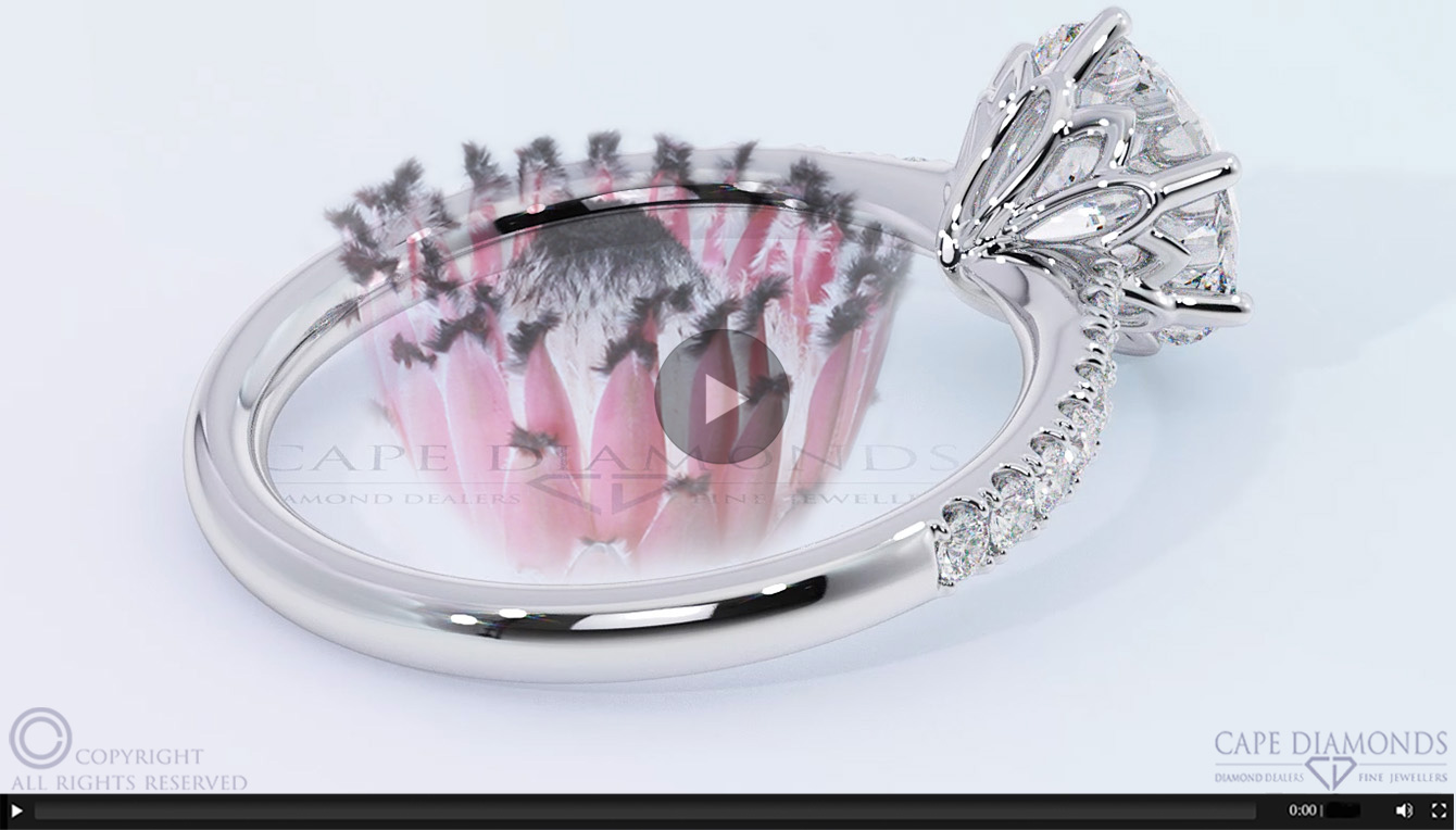 184 the infinite protea flower white gold or